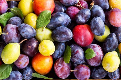 Taş Çekirdekli Meyveler